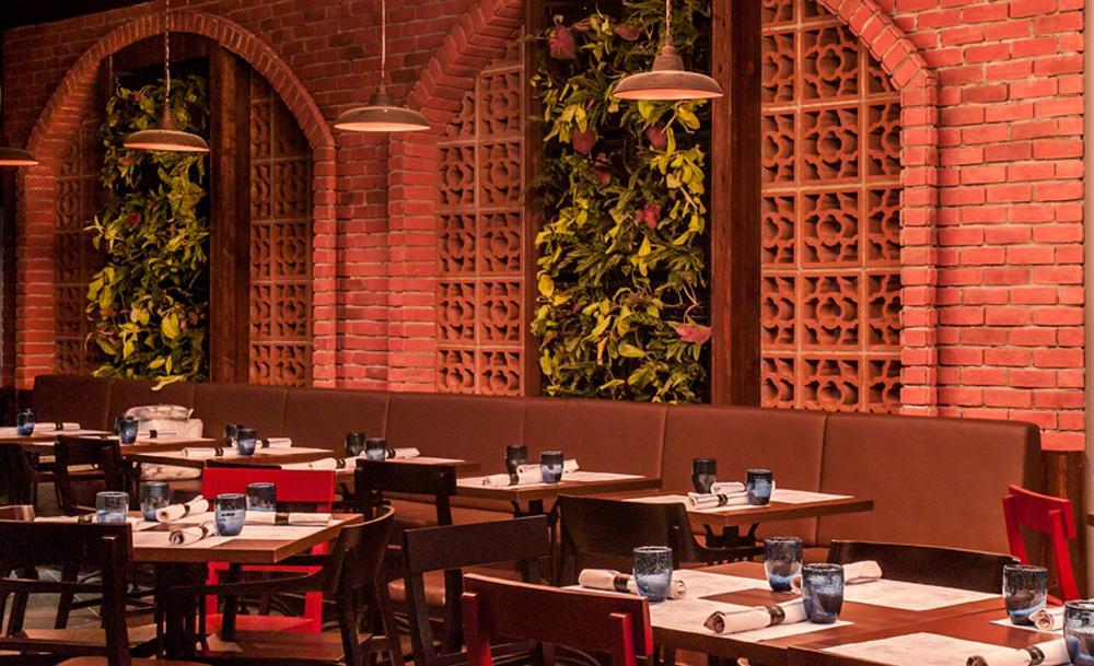 Best-dining-deals-venuerific-blog-salt-and-tapas-bar-interior