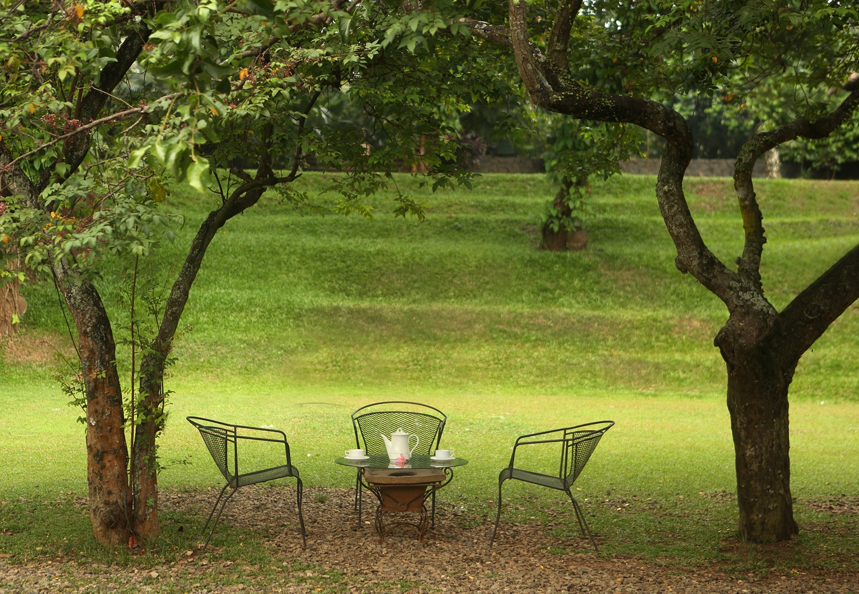 Breathtaking-venues-venuerific-blog-plataran-cilandak-garden