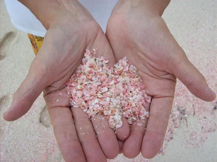 9-pink-sand-beach-harbour-island-bahamas-1