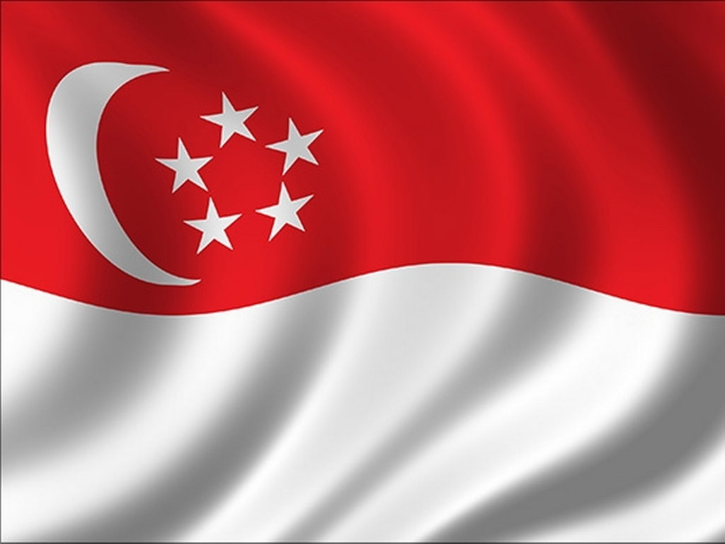 Popular-street-food-venuerific-blog-singapore-flag